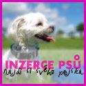 Inzerce ps� a �t��at