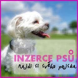 Inzerce psů a štěňat
